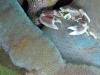 K1600_IMG_8648.JPG